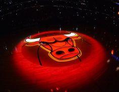 Lot 314: Chicago Bulls Derrick Rose Signed Adidas AdiZero