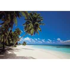 Maldives - Murals Murals - A vision of paradise. A tempting mural showing an idyllic beach from the Maldives in the Indian Ocean. Total mural size 388 x x Photo Wallpaper, Of Wallpaper, Iles Grenadines, Paradis Tropical, Poster Mural, Beach Mural, Brewster Wallpaper, Maldives Beach, Mauritius