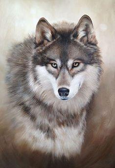 1529_Portrait-of-a-Wolf.jpg (366×535)