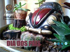 Decor Interior Design, Interior Design Living Room, Room Interior, Echeveria, Good Vibes Only, Home Decor Bedroom, Cactus Plants, Contemporary Art, Artisan