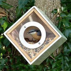 Cool Urban Bird Feeder #birdhousetips