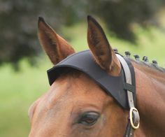 The Shires Poll Guard is made of soft, shock absorbent neoprene, perfect for protecting the poll against bumps and scrapes while stabled or travelling. http://www.totally-tack.co.uk/p_3796_shires-neoprene-poll-guard