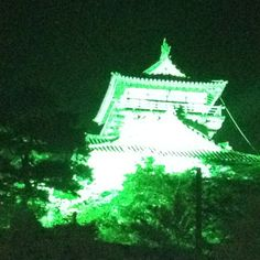 The Maruoka castle of night. It is lit up.