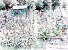 Pamela Grace, Allotment Flowers