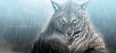 Skonar Gray - Werewolf / Rain - The Book of Gray by BradyGoldsmith.deviantart.com on @DeviantArt