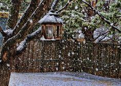 West Texas Snow