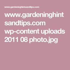 www.gardeninghintsandtips.com wp-content uploads 2011 08 photo.jpg