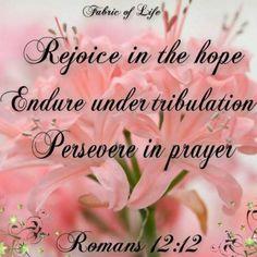 Romans 12:12.  Rejoice!
