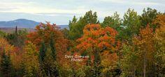 Autumn Landscape Photo - Fall Foliage Picture - Moxie Mountain View - Home Decor Print