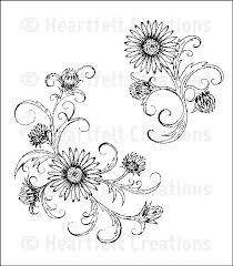 aster flower drawing - Google Search