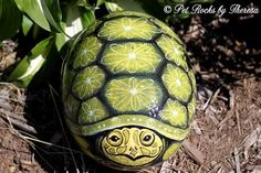 Very Large Hand Painted Turtle Rock Garden Decoration Art Unique One of a Kind Turtle Painting, Pebble Painting, Pebble Art, Stone Painting, Painting Art, Stone Crafts, Rock Crafts, Kid Crafts, Turtle Rock
