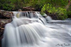 National Falls, Royal National Park, Sydney Sydney Wedding, Landscape Photographers, Wedding Portraits, Waterfall, National Parks, Fine Art, Photography, Outdoor, Ideas