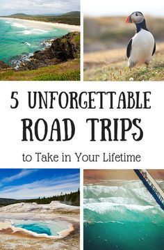 Here are five unforgettable road trips to add to your bucket list.