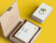 C I C A — концептуальный проект бренда виниловых пластинок