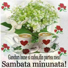 Positive Vibes Quotes, Beautiful Love Pictures, Tea Cups, The Originals, Tableware, Messages, Facebook, Bom Dia, Italia