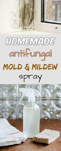 Homemade antifungal mold and mildew spray - myCleaningSolutions.com
