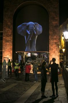 Elephantastic at #LumiereDurham 2013 (Photo: Matthew Andrews)