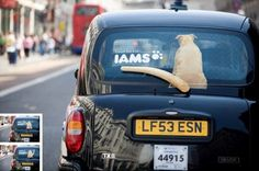 Iams dog food - Guerilla marketing with wagging tail windshield wiper