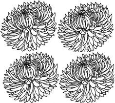 Vegetable Crafts, Crysanthemum, Flower Template, Book Characters, Amazing Flowers, Childrens Books, Prints, Coloring, School