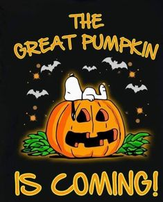 The Great Pumpkin Is Coming! Charlie Brown Halloween, Great Pumpkin Charlie Brown, Peanuts Halloween, Charlie Brown And Snoopy, Happy Halloween, Snoopy Images, Snoopy Pictures, Peanuts Cartoon, Peanuts Snoopy