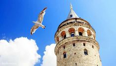 From custom wallpaper leader Maggenta, Let you to express yourself on your walls with, Historical Galata Tower from below, Istanbul Turkey wall mural. Normal Wallpaper, Standard Wallpaper, City Wallpaper, Custom Wallpaper, Pierre Loti, Hagia Sophia, Forest Stewardship Council, Most Beautiful Cities, Istanbul Turkey