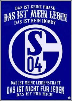 Die 689 Besten Bilder Von Schalke Schalke Schalke 04 Und