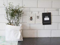#interior #decor #styling #plant #pot #paperbag #tiles