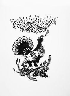 capercaillie, bird, fowl