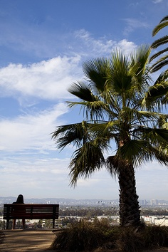 A view from the campus of Loyola Marymount University.
