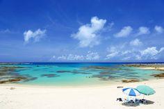 《完全保存版》「奄美大島2泊3日」を満喫する観光モデルコースはこれだ