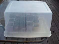 The Tasty Cheapskate: A Cold Frame--Easy, Quick, Cheap