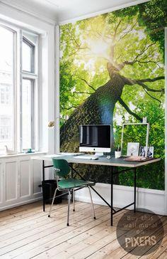 Tree - inspiration wall mural, interiors gallery• PIXERSIZE.com
