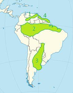 Niziny Ameryki Południowej - mapa 1. Nizina Orinoko 2. Nizina Amazonki 3. Nizina La Platy 4. Nizina Gujańska