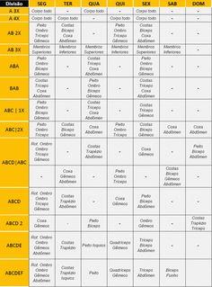 Tabela divisao grupos musculares musculacao