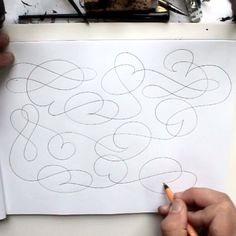 """""""I love drawing lines. It's as simple and complicated as that. Hand-Lettering by Seb Lester"""