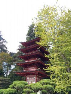 Japanese Tea Garden #SF #thingstodo #California #GoldenGatePark
