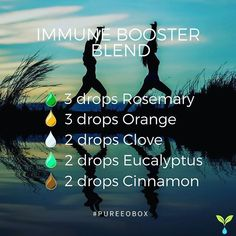 Immune booster essential oil blend. Brought to you by Pure EO Box. This is a great blend to diffuse throughout the house at any time of day to help prevent those stubborn colds. #essentialoilblends #diffuserblends #blends #pureeobox . . Immune Booster Ble #essentialoilsblends