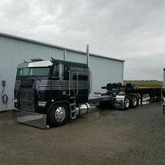 Freightliner 3 Axle Re-Bar Hauler Show Trucks, Big Rig Trucks, Custom Big Rigs, Custom Trucks, Freightliner Trucks, Truck Paint, Train Truck, Cab Over, Trucks And Girls