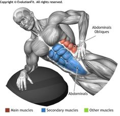 ABDOMINALS -  SIDE PLANK ON BOSU
