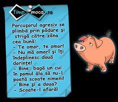TimpMoca.ro - Porcușurul năzdrăvan #PorcusorulAgresiv