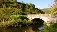 El puente, el río, el entorno forman una armonía total.