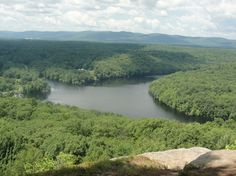 favorit place, upstat ny, botan interest, nyfing lakesupst, ridg trail, western nyfing, lakesupst ny