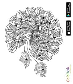 9 Awesome Peacock Feather Vector Black And White Images