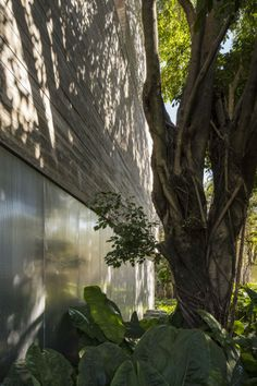cube_house_studio_mk27_11 - 3D Architectural Visualization & Rendering Blog