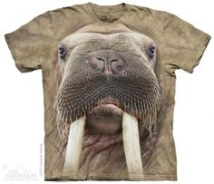 Walrus Face T-Shirt at theBIGzoo.com, a toy store that has shipped over 1.2 million items.