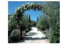 Tuscany Tour - Exclusive Wine Tour