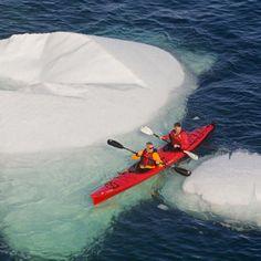 Kayaking among icebergs off the coast of Newfoundland, Canada. | Coastalliving.com