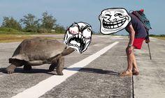 如果你正在辦性事但卻遭人打斷,你會有什麼心情?這隻巨龜就表示很憤怒!