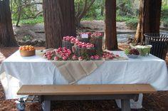décoration de table d'anniversaire d'été pour adulte : thème fôret