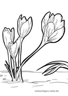 Die 8 Besten Bilder Von Blumen Vorlage Blumen Vorlage Kostenlose